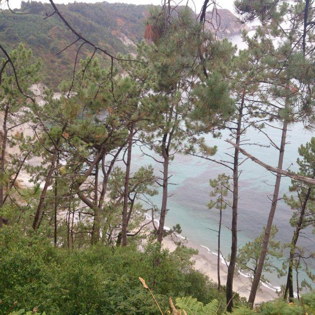Senda Lamuño – Monte Valsera – Playa de Oleiros